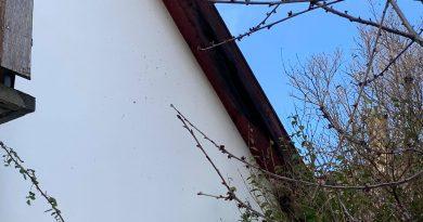 2021. március 5. Dömsöd, Tassi út – lakóház kigyulladt